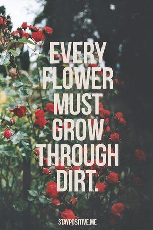 Flower-grow